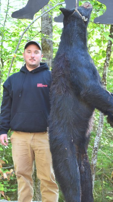 Maine black bear hunt at Foggy Mountain Guide Service