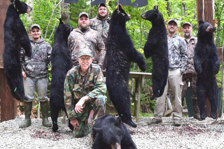 Maine bear hunt