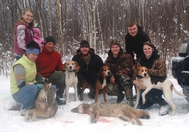 Maine coyote hunting