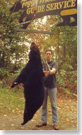 Trophy black bear from the Maine highlands
