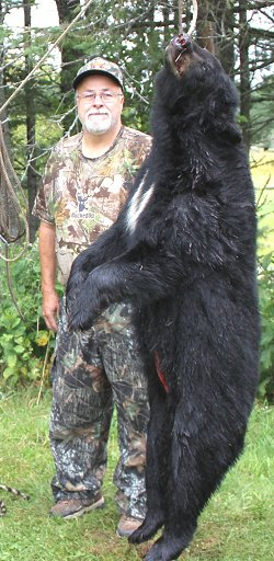 black bear hunts at Foggy Mountain
