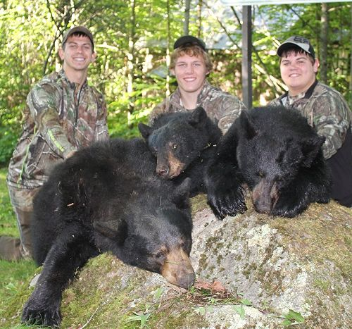 Family bear hunts at Foggy Mountain Guide Service
