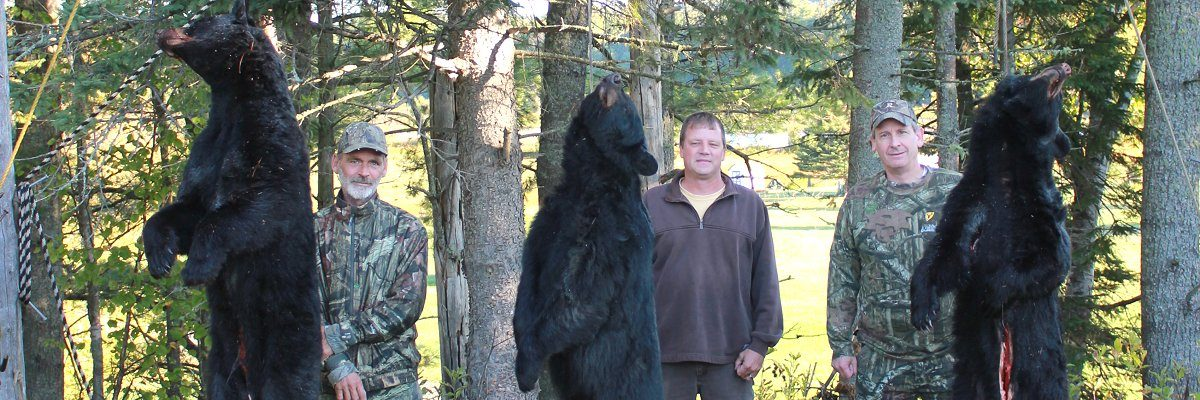 Maine bear hunters at Foggy Mountain