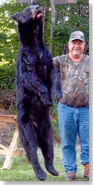 black bear hunting at Foggy Mountain Guide Service